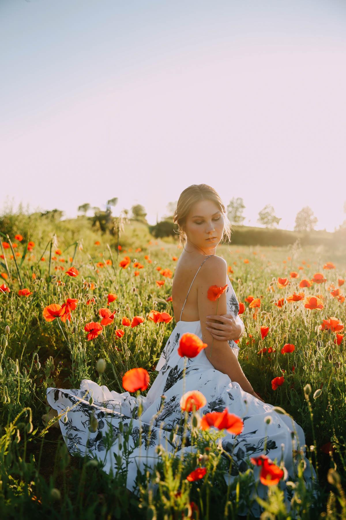 poppy-field-4311
