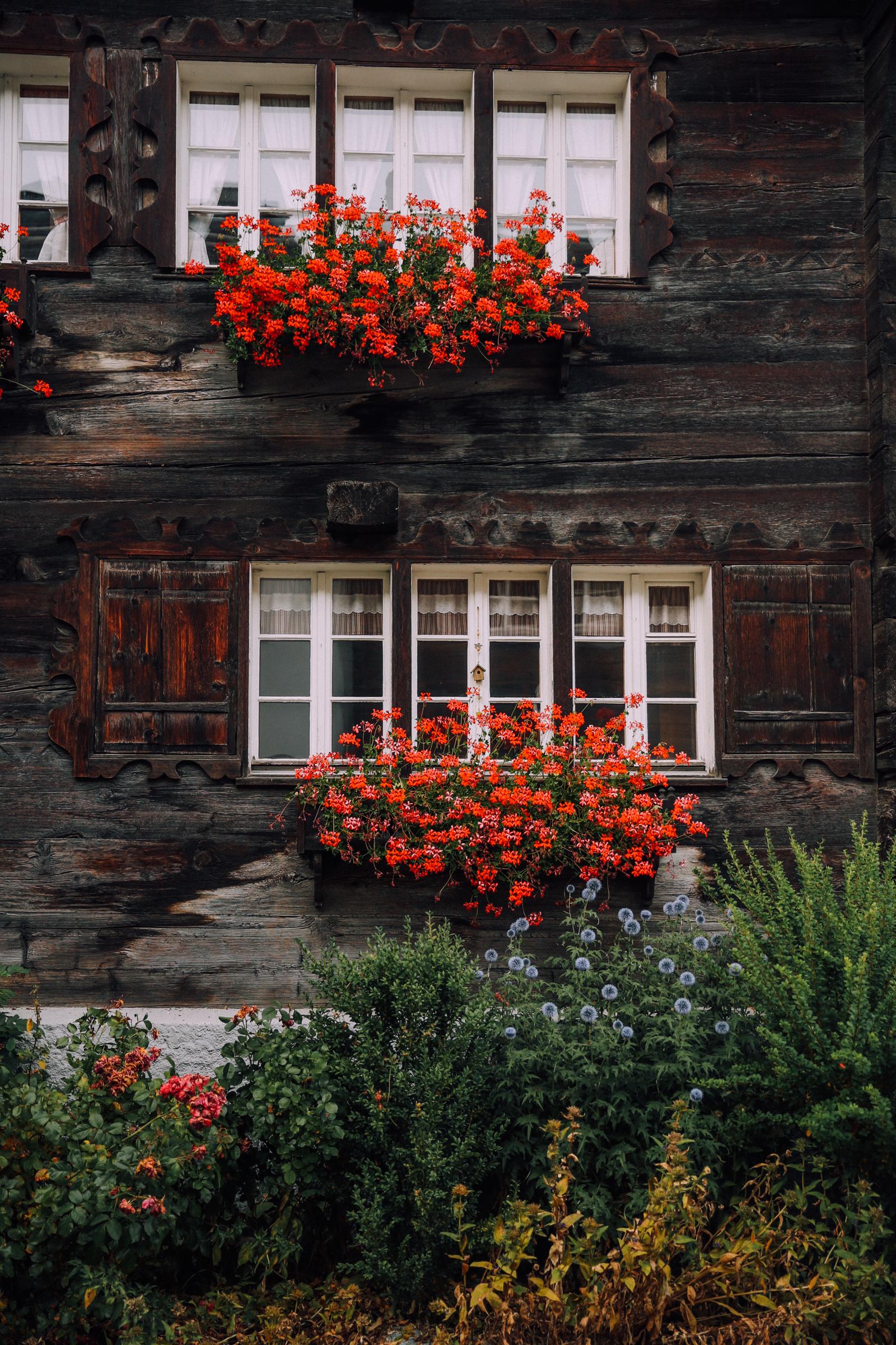 zermatt-3304