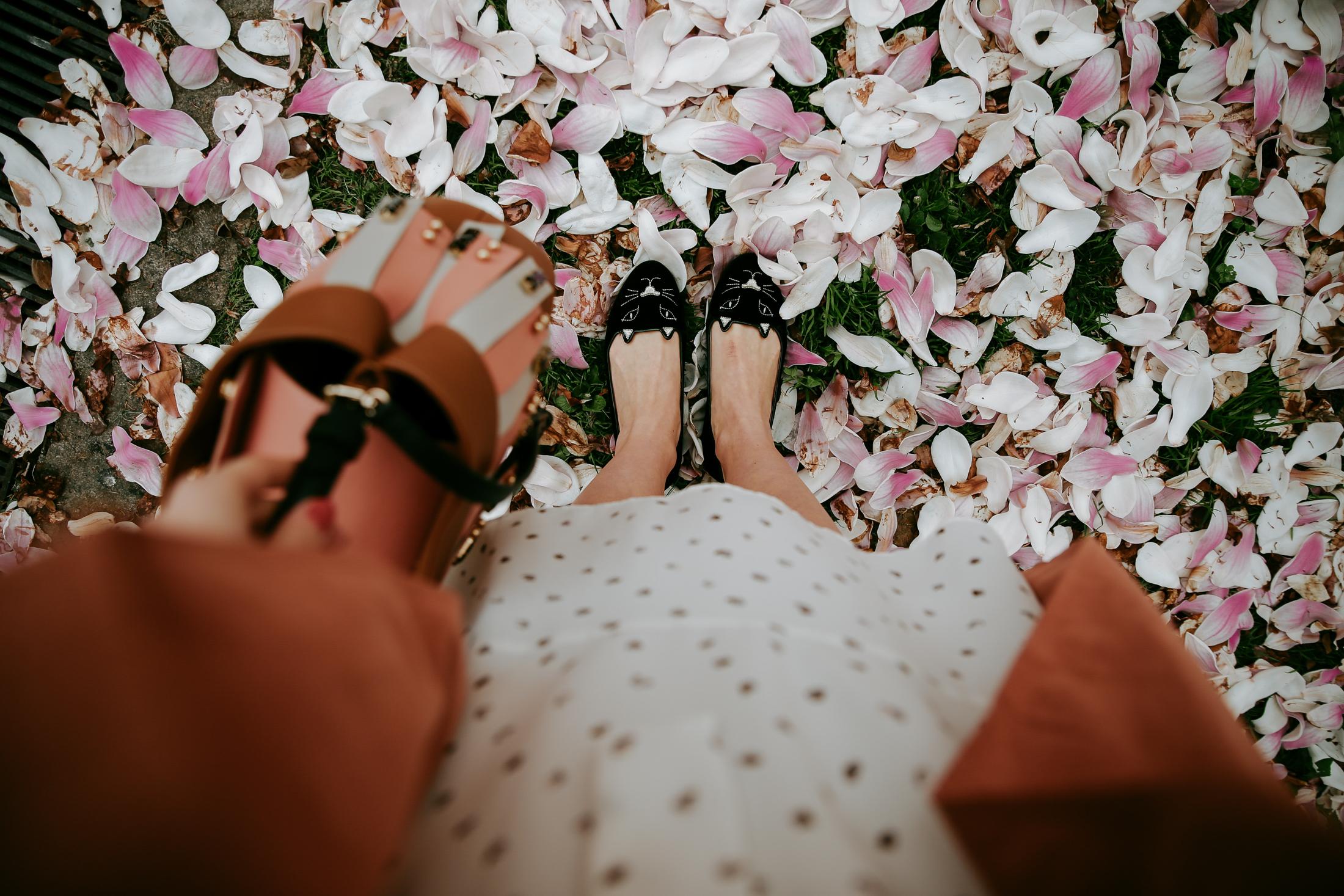 spring-blooms-milano-7336