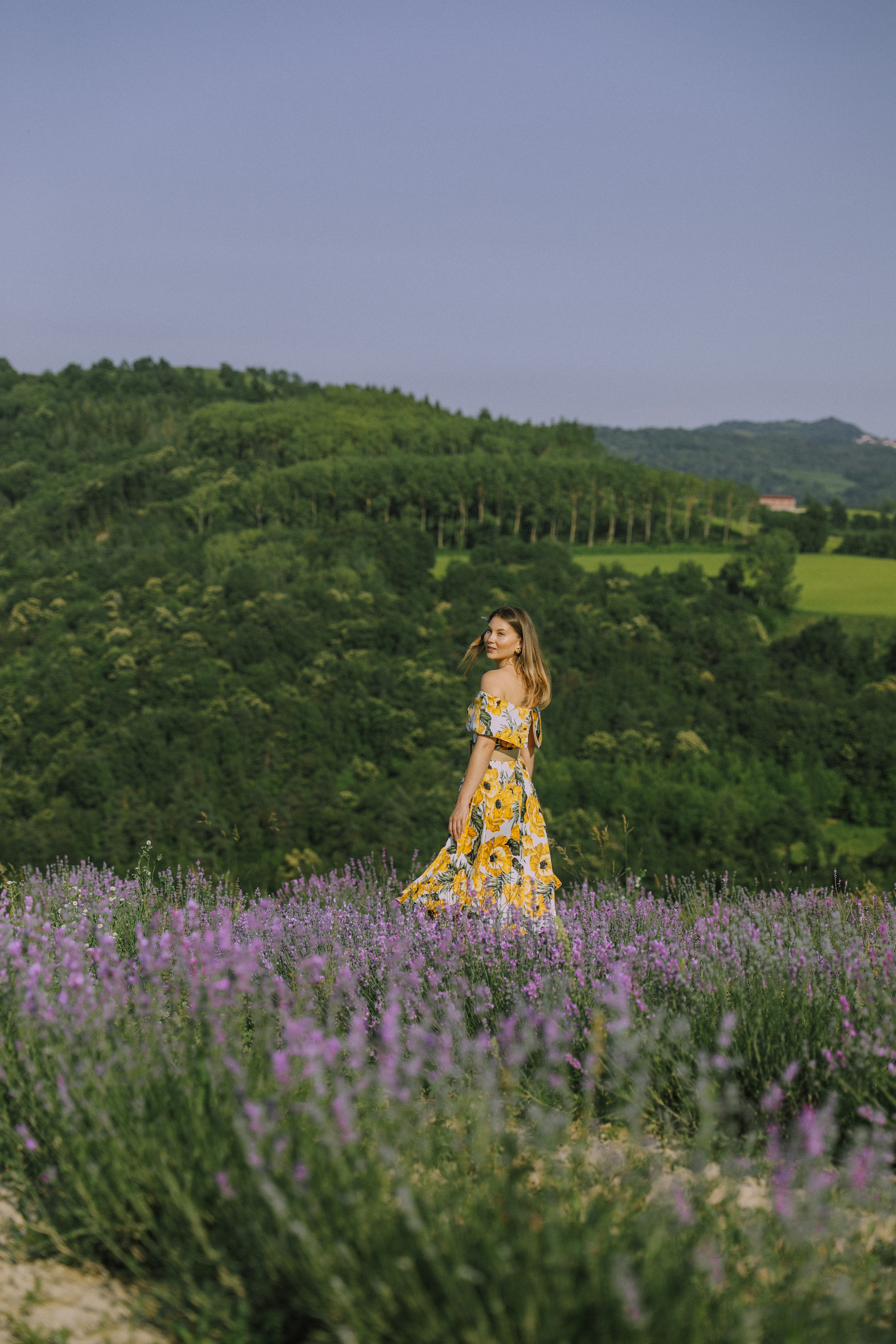 Angystearoom - LAVENDER FIELDS IN ITALY! WHERE TO FIND THEM?